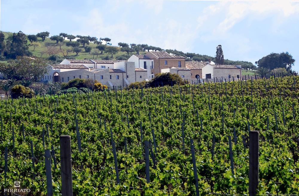 firriato-vigne