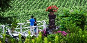 Wine Tour nr. 2 - Etna