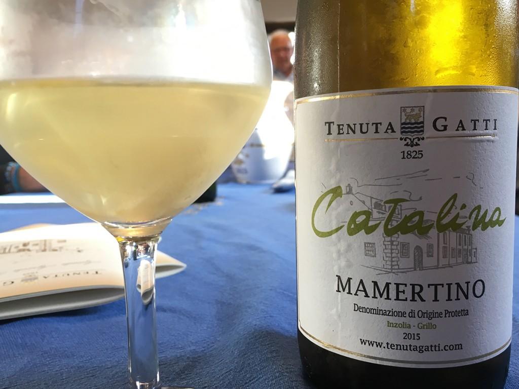 in visita presso Tenuta Gatti, il Mamertino - Catalina