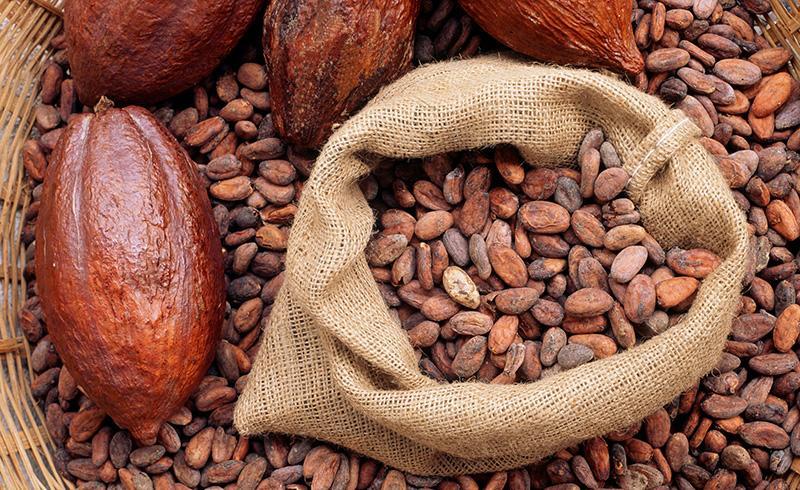 la materia prima, il cacao arriva dal Sudamerica. Lo lavoravano gli Aztechi
