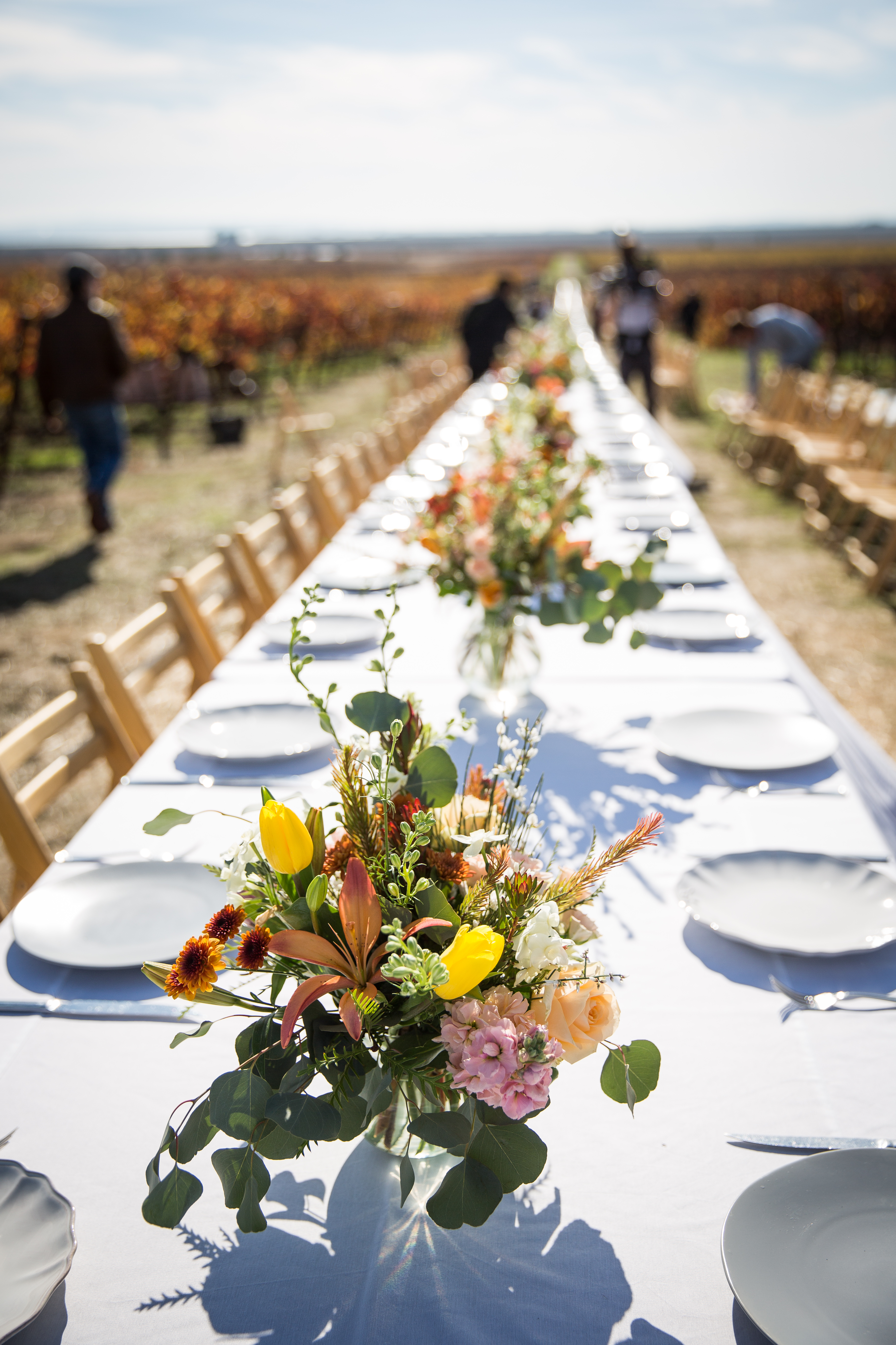 Visit California Grateful Table event on the Napa-Sonoma County line, November 21, 2017.